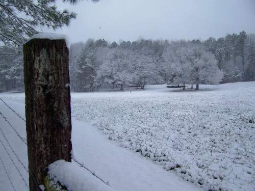 clay county al snow-002