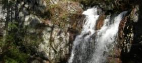 Nubbin Creek Trail Talladgea National Forest